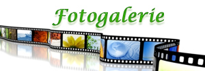logo-fotogalerie_eyecatcher